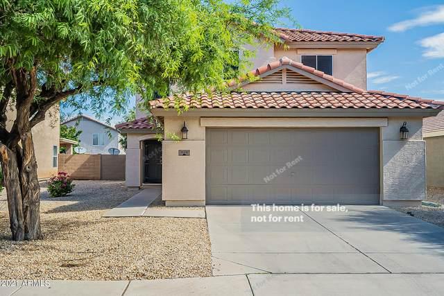 1126 E Desert Holly Drive, San Tan Valley, AZ 85143 (MLS #6273590) :: Long Realty West Valley