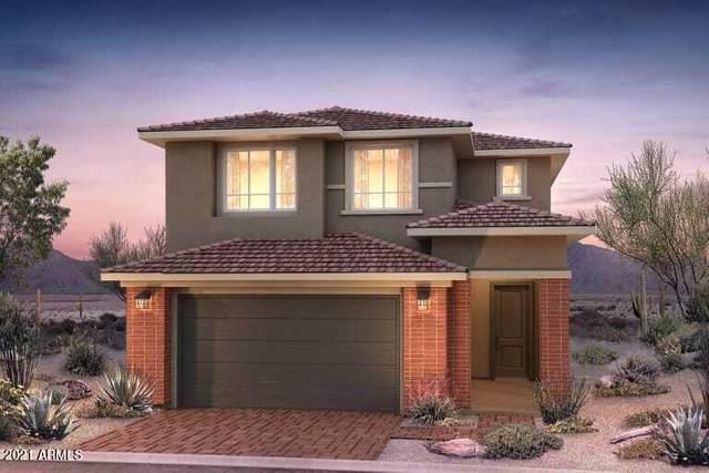 3546 E Louise Drive, Phoenix, AZ 85050 (MLS #6273594) :: Arizona Home Group
