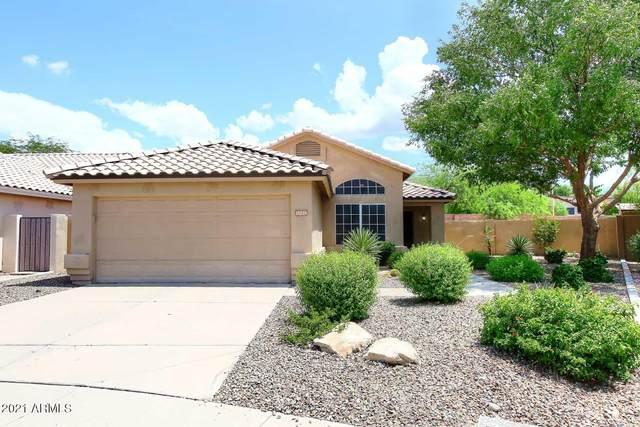 15239 N 93RD Way, Scottsdale, AZ 85260 (MLS #6273604) :: Power Realty Group Model Home Center