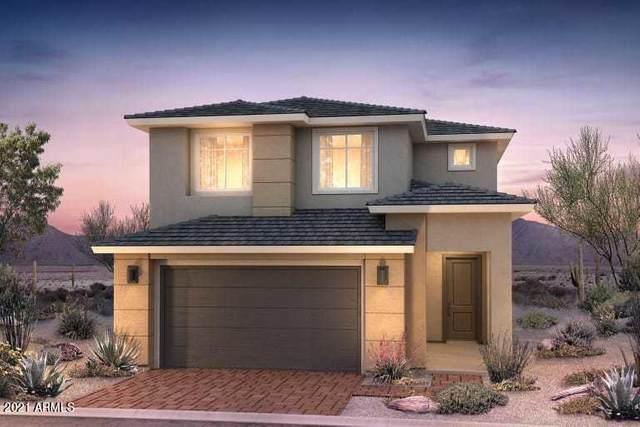 3550 E Louise Drive, Phoenix, AZ 85050 (MLS #6273609) :: Arizona Home Group