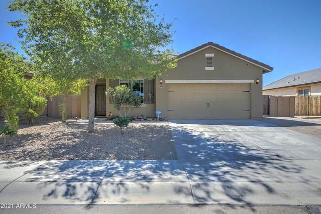 39993 W Walker Way, Maricopa, AZ 85138 (MLS #6273686) :: Walters Realty Group