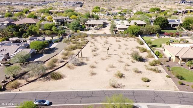 8410 W Park View Court, Peoria, AZ 85383 (MLS #6273763) :: Klaus Team Real Estate Solutions