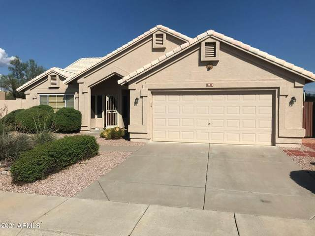 30663 N 44TH Street, Cave Creek, AZ 85331 (MLS #6273777) :: Arizona Home Group