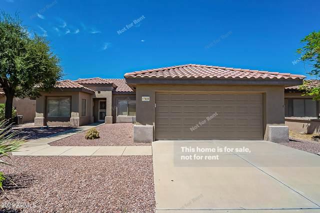 17820 N Estrella Vista Drive, Surprise, AZ 85374 (MLS #6273792) :: Long Realty West Valley