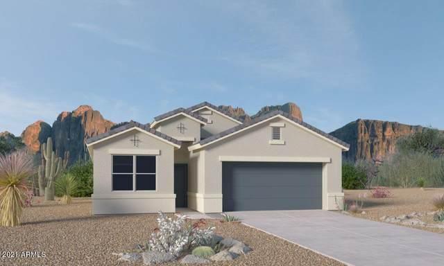 4619 W Lemon Avenue, Coolidge, AZ 85128 (MLS #6273799) :: Power Realty Group Model Home Center