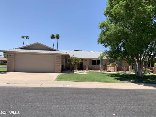10217 W Pineridge Drive, Sun City, AZ 85351 (MLS #6273808) :: The Ellens Team