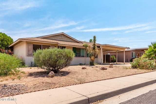 2501 E Larkspur Drive, Phoenix, AZ 85032 (MLS #6273841) :: The Ellens Team
