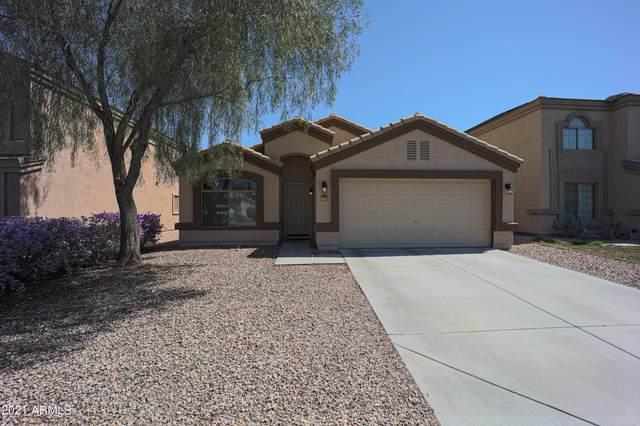 23943 W Hadley Street, Buckeye, AZ 85326 (MLS #6273888) :: Keller Williams Realty Phoenix