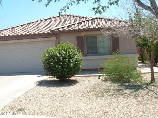 11167 W Tonto Street, Avondale, AZ 85323 (MLS #6273912) :: Long Realty West Valley