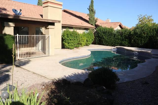 3703 E Lavender Lane, Phoenix, AZ 85044 (MLS #6273919) :: Service First Realty