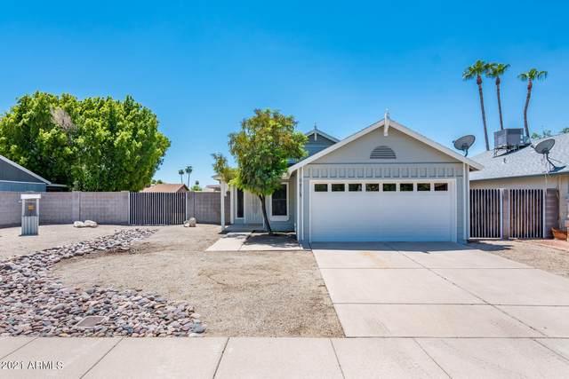 5115 W Aster Drive, Glendale, AZ 85304 (MLS #6273929) :: Long Realty West Valley