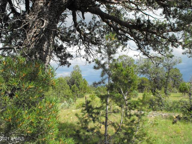 9046 Mogollon Trail, Happy Jack, AZ 86024 (MLS #6273990) :: The Ellens Team