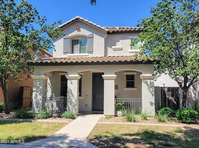 3950 S Napa Lane, Gilbert, AZ 85297 (MLS #6274009) :: Justin Brown | Venture Real Estate and Investment LLC