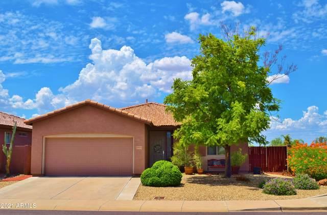 19574 N 107TH Drive, Sun City, AZ 85373 (MLS #6274016) :: Long Realty West Valley