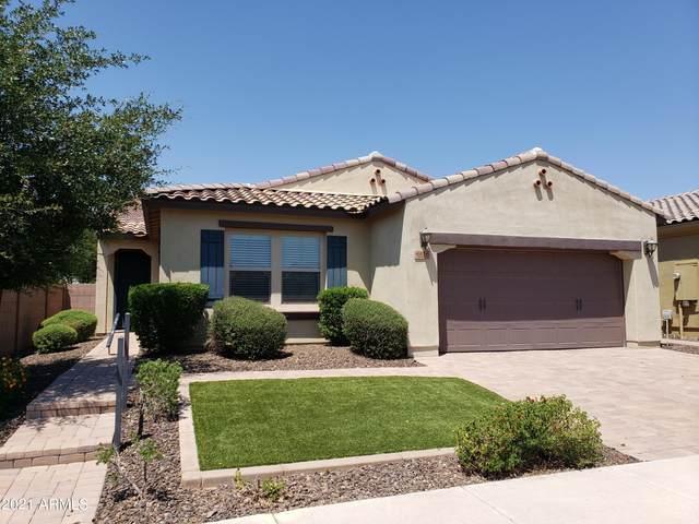 4416 E Saint John Road, Phoenix, AZ 85032 (MLS #6274033) :: Yost Realty Group at RE/MAX Casa Grande