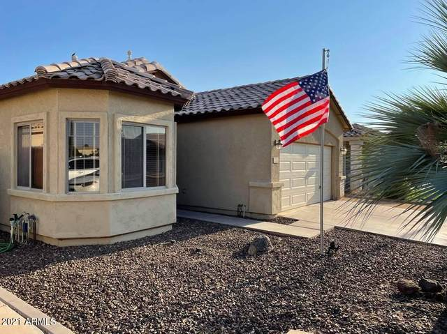 2847 E Cathy Drive, Gilbert, AZ 85296 (MLS #6274037) :: The Property Partners at eXp Realty
