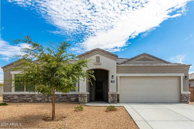 29952 W Fairmount Avenue, Buckeye, AZ 85396 (MLS #6274069) :: Power Realty Group Model Home Center