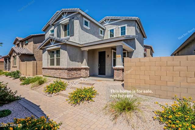 5728 E Butte Street, Mesa, AZ 85205 (MLS #6274072) :: Yost Realty Group at RE/MAX Casa Grande