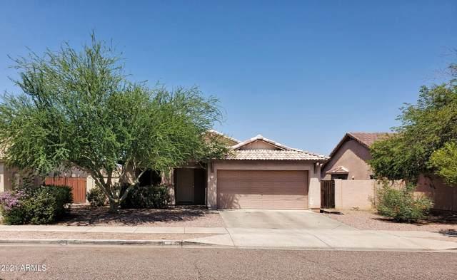 6616 S 18TH Drive, Phoenix, AZ 85041 (MLS #6274086) :: Yost Realty Group at RE/MAX Casa Grande