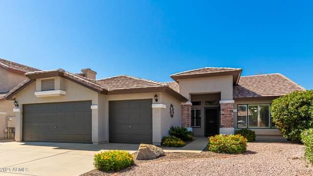 4233 E Coolbrook Avenue, Phoenix, AZ 85032 (MLS #6274097) :: The AZ Performance PLUS+ Team