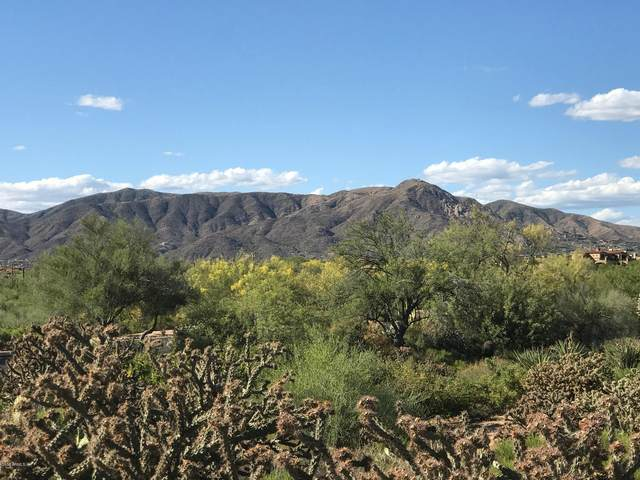 10524 E Winter Sun Drive, Scottsdale, AZ 85262 (MLS #6274111) :: ASAP Realty