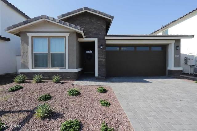 19690 W Turney Avenue, Litchfield Park, AZ 85340 (MLS #6274149) :: Long Realty West Valley