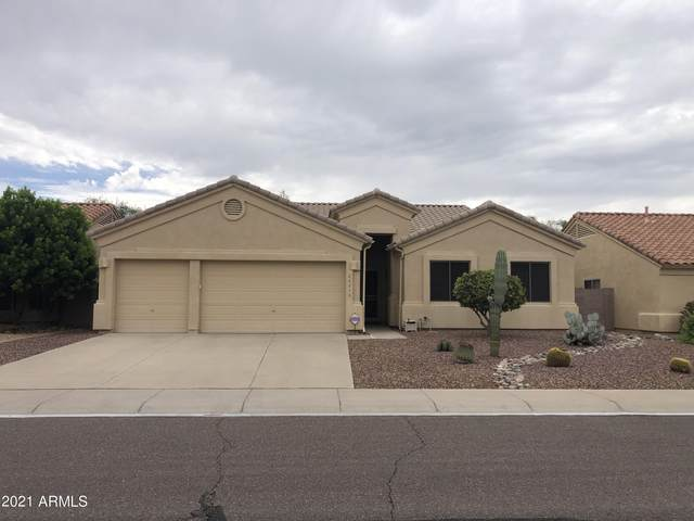 26273 N 47TH Place, Phoenix, AZ 85050 (MLS #6274163) :: Justin Brown | Venture Real Estate and Investment LLC
