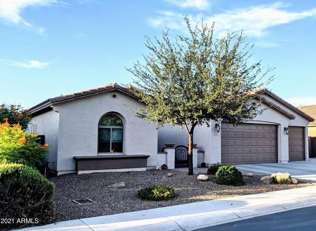 642 W Witt Avenue, San Tan Valley, AZ 85140 (MLS #6274187) :: Relevate | Phoenix