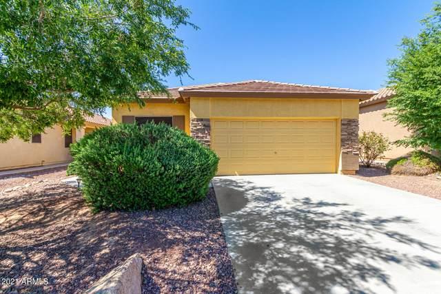 12514 W Cercado Lane, Litchfield Park, AZ 85340 (MLS #6274191) :: Yost Realty Group at RE/MAX Casa Grande