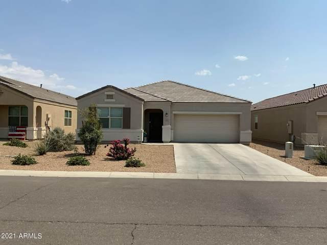 5217 E Andalusite Lane, San Tan Valley, AZ 85143 (MLS #6274307) :: Relevate | Phoenix