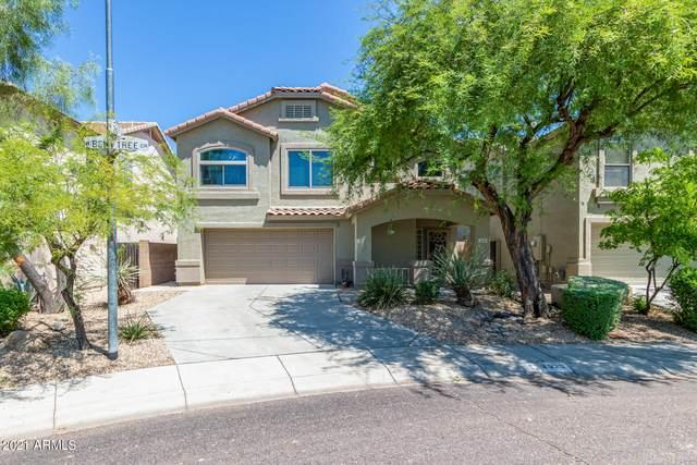 2530 W Bent Tree Drive, Phoenix, AZ 85085 (MLS #6274364) :: West USA Realty