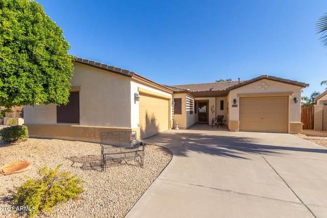 16139 N 164TH Lane, Surprise, AZ 85388 (MLS #6274370) :: Long Realty West Valley