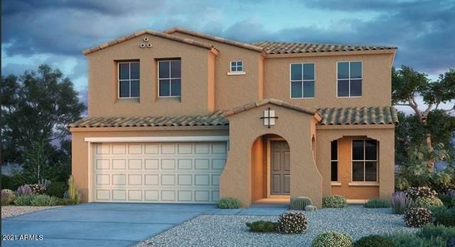 13710 N 174TH Lane, Surprise, AZ 85388 (MLS #6274372) :: Elite Home Advisors