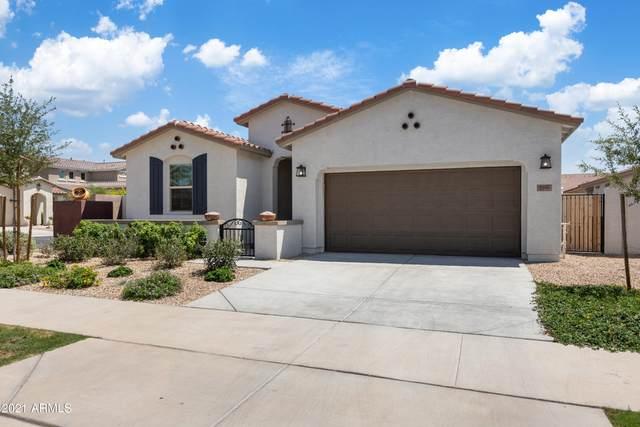9747 E Tripoli Avenue, Mesa, AZ 85212 (MLS #6274433) :: Yost Realty Group at RE/MAX Casa Grande