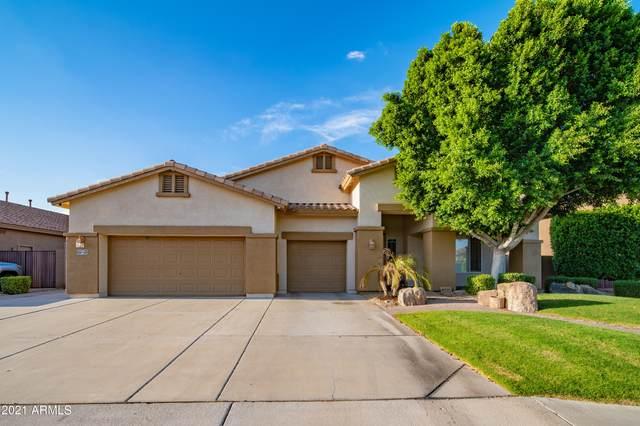 9754 W Hedge Hog Place, Peoria, AZ 85383 (MLS #6274456) :: The Bole Group | eXp Realty