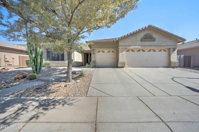 2415 W Shannon Street, Chandler, AZ 85224 (MLS #6274477) :: Long Realty West Valley