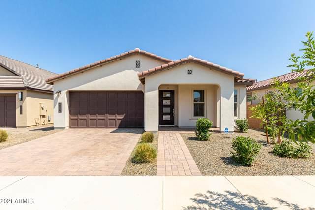 20856 E Timberline Road, Queen Creek, AZ 85142 (MLS #6274505) :: Yost Realty Group at RE/MAX Casa Grande