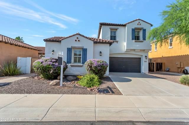 2360 E Azalea Drive, Chandler, AZ 85286 (MLS #6274554) :: Yost Realty Group at RE/MAX Casa Grande