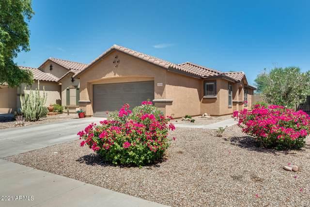 40084 W Catherine Drive, Maricopa, AZ 85138 (MLS #6274587) :: Yost Realty Group at RE/MAX Casa Grande