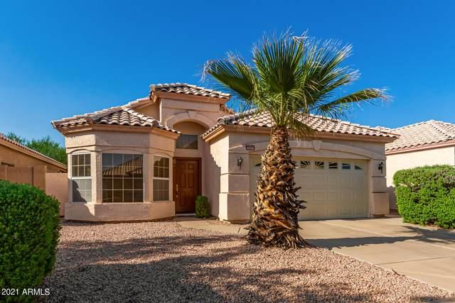 4240 E South Fork Drive, Phoenix, AZ 85044 (MLS #6274588) :: The AZ Performance PLUS+ Team