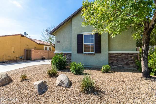 29369 W Clarendon Avenue, Buckeye, AZ 85396 (MLS #6274626) :: Yost Realty Group at RE/MAX Casa Grande