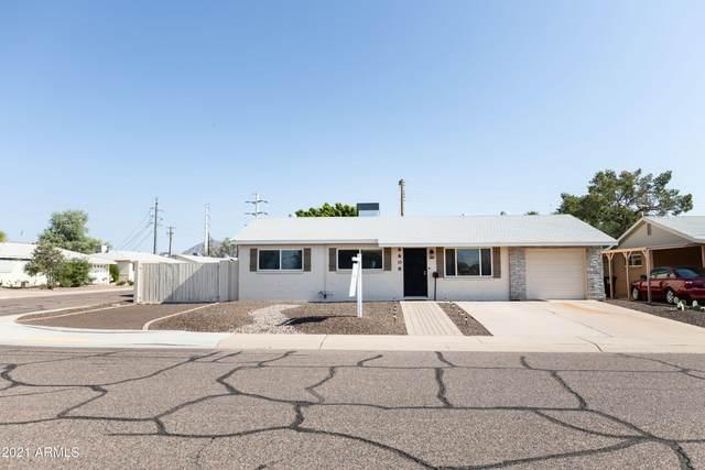 6608 E Belleview Street, Scottsdale, AZ 85257 (MLS #6274630) :: Yost Realty Group at RE/MAX Casa Grande