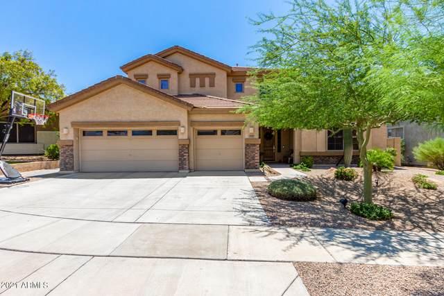 2121 W Apache Rain Road, Phoenix, AZ 85085 (MLS #6274634) :: Yost Realty Group at RE/MAX Casa Grande