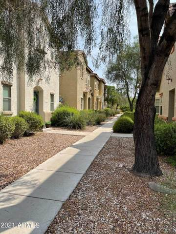14150 W Country Gables Drive, Surprise, AZ 85379 (MLS #6274648) :: Yost Realty Group at RE/MAX Casa Grande