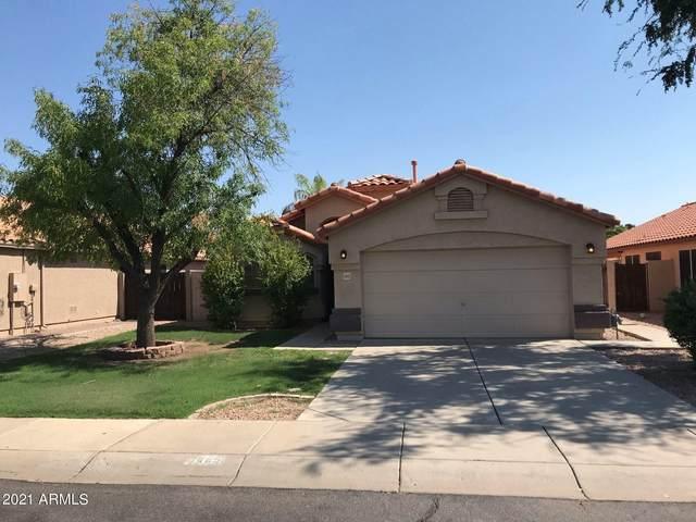 1445 E Century Avenue, Gilbert, AZ 85296 (MLS #6274671) :: Yost Realty Group at RE/MAX Casa Grande