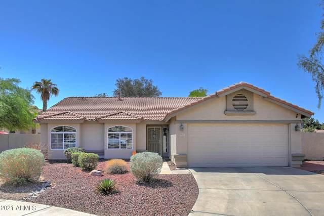 6647 W Tonopah Drive, Glendale, AZ 85308 (MLS #6274727) :: Yost Realty Group at RE/MAX Casa Grande