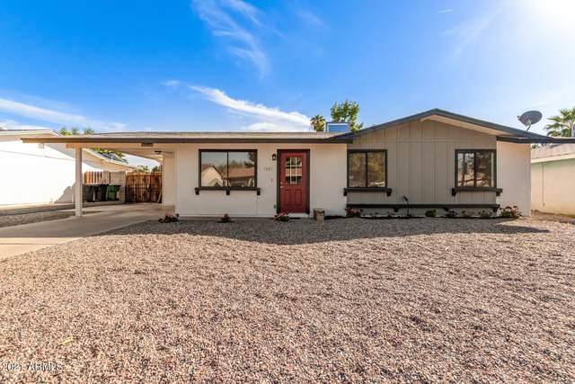 7843 E Gale Avenue, Mesa, AZ 85209 (MLS #6274743) :: Dijkstra & Co.