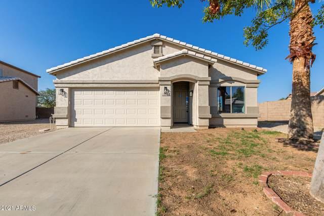 174 E Palomino Way, San Tan Valley, AZ 85143 (MLS #6274751) :: Elite Home Advisors