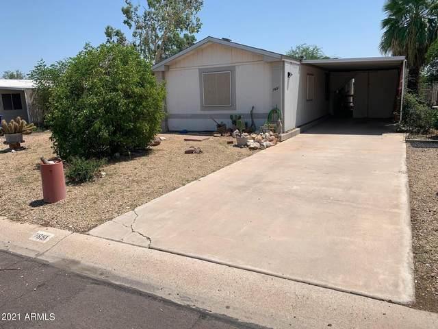 7651 E Gale Avenue, Mesa, AZ 85209 (MLS #6274758) :: Yost Realty Group at RE/MAX Casa Grande