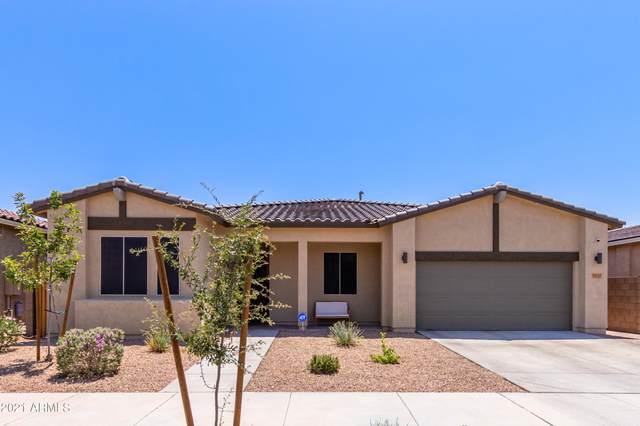23123 E Via Del Sol, Queen Creek, AZ 85142 (MLS #6274767) :: Yost Realty Group at RE/MAX Casa Grande